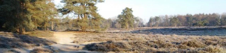 De Heerlickheyt, park in Hoogersmilde